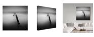 "Trademark Global Daniel Rericha 'One' Canvas Art - 35"" x 35"" x 2"""