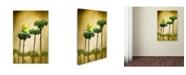 "Trademark Global Jimmy Hoffman 'Cleopatra' Canvas Art - 24"" x 16"" x 2"""