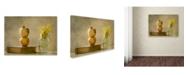 "Trademark Global Delphine Devos 'Wild Flowers' Canvas Art - 19"" x 14"" x 2"""