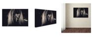 "Trademark Global Joan Le Jan 'Burn' Canvas Art - 32"" x 22"" x 2"""