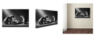 "Trademark Global Victoria Ivanova 'The Mausoleum' Canvas Art - 47"" x 30"" x 2"""