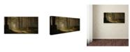 "Trademark Global Jan Paul Kraaij 'A Forest Walk' Canvas Art - 10"" x 19"" x 2"""