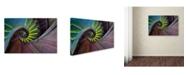 "Trademark Global Izidor Gasperlin 'Crazy Eye' Canvas Art - 32"" x 22"" x 2"""