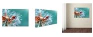 "Trademark Global Mustafa ozturk 'Freedoom' Canvas Art - 24"" x 16"" x 2"""