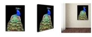 "Trademark Global Danny Mendoza 'Peacock' Canvas Art - 47"" x 35"" x 2"""