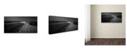 "Trademark Innovations Paulo Abrantes 'Where Shadows Lie' Canvas Art - 47"" x 24"" x 2"""