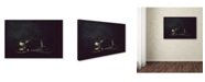 "Trademark Global Delphine Devos 'Austerity' Canvas Art - 19"" x 12"" x 2"""