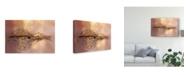 "Trademark Global Oranit Turgeman 'A Golden Leaf' Canvas Art - 19"" x 2"" x 12"""