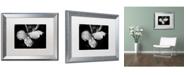 """Trademark Global PIPA Fine Art 'Raindrops on Wild Rose' Matted Framed Art - 16"""" x 20"""""""