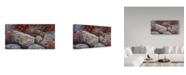 "Trademark Global Wilhelm Goebel 'Eastern Chipmunk' Canvas Art - 16"" x 32"""