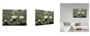"Trademark Global Incredi 'Daisies In The Sun' Canvas Art - 19"" x 12"""