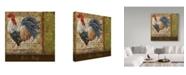 "Trademark Global Jean Plout 'Le Coq 7' Canvas Art - 14"" x 14"""
