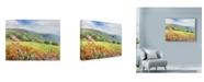 "Trademark Global Li Bo 'Blooming Poppy 1' Canvas Art - 19"" x 14"""