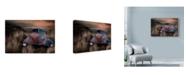 "Trademark Global Lori Hutchison 'Abandoned Junker' Canvas Art - 24"" x 16"""