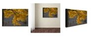 """Trademark Global Kurt Shaffer 'Golden Autumn Color' Canvas Art - 16"""" x 24"""""""