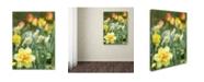 "Trademark Global Kurt Shaffer 'Double Headed Daffodil' Canvas Art - 18"" x 24"""