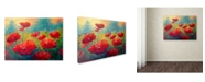 """Trademark Global Marion Rose 'Field of Poppies' Canvas Art - 24"""" x 32"""""""