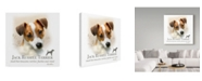 "Trademark Global Howard Robinson 'Jack Russell Terrier' Canvas Art - 35"" x 35"""