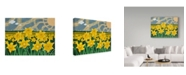 "Trademark Global Jake Hose 'Daffodil Field' Canvas Art - 24"" x 32"""