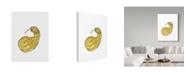 "Trademark Global Jessmessin 'Long Gourd' Canvas Art - 35"" x 47"""