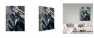"Trademark Global Ron Parker 'Bluebirds On Rail Fence' Canvas Art - 35"" x 47"""
