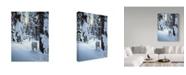 "Trademark Global Ron Parker 'Silent Steps' Canvas Art - 24"" x 32"""