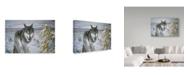 "Trademark Global Ron Parker 'Lone Wolf' Canvas Art - 30"" x 47"""