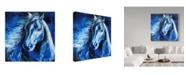 "Trademark Global Marcia Baldwin 'Blue Thunder' Canvas Art - 35"" x 35"""