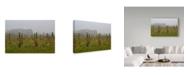 "Trademark Global Incredi 'Winter Winyard Iii' Canvas Art - 47"" x 30"""