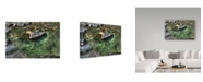 "Trademark Global Ian Tornquist 'Base Of The Falls' Canvas Art - 47"" x 30"""