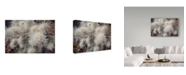 "Trademark Global Janice Sullivan 'Cholia' Canvas Art - 32"" x 22"""