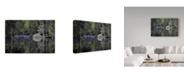 "Trademark Global J.D. Mcfarlan 'Magnolia Gardens 2' Canvas Art - 47"" x 30"""