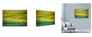 "Trademark Global Maciej Duczynski 'Moravia 2' Canvas Art - 32"" x 22"""