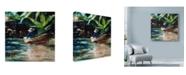 "Trademark Global Solveiga 'Sunny Boat' Canvas Art - 24"" x 24"""