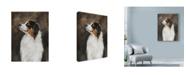 "Trademark Global Solveiga 'Australian Shepherd Abstract' Canvas Art - 35"" x 47"""