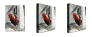 "Trademark Global Michelle Calkins 'Key West Rooster' Canvas Art - 47"" x 35"""