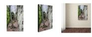"Trademark Global Monica Fleet 'Vision Of Fairytale' Canvas Art - 47"" x 30"""