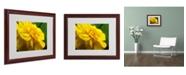 """Trademark Global Monica Fleet 'Ambiguous Vision' Matted Framed Art - 20"""" x 16"""""""