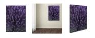 """Trademark Global Kurt Shaffer 'Alien Flower Pods' Canvas Art - 35"""" x 47"""""""