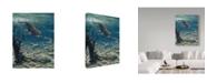"Trademark Global Jeff Tift 'Underwater Pursuit' Canvas Art - 14"" x 19"""