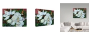 "Trademark Global Joanne Porter 'Magnolias' Canvas Art - 14"" x 19"""