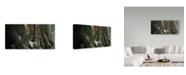 "Trademark Global Ron Parker 'Blacktail In Sitka' Canvas Art - 10"" x 19"""