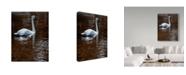 """Trademark Global Ron Parker 'Evening Amber' Canvas Art - 14"""" x 19"""""""