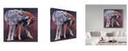 "Trademark Global Mark Adlington 'Two Wolves' Canvas Art - 14"" x 14"""
