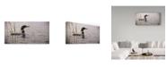"Trademark Global Wilhelm Goebel 'Emerging Loon' Canvas Art - 12"" x 24"""