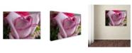 """Trademark Global Monica Fleet 'Deep Desire' Canvas Art - 14"""" x 19"""""""