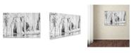 """Trademark Global Jason Shaffer 'Mill Hollow Winter' Canvas Art - 24"""" x 16"""""""
