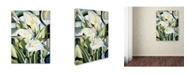 "Trademark Global Catherine Abel 'Cubist Lilies 2002' Canvas Art - 24"" x 18"""