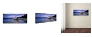 "Trademark Global David Evans 'Boathouse-Okarito Lagoon-NZ' Canvas Art - 32"" x 10"""