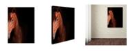 "Trademark Global Preston 'Kentucky horse Intense' Canvas Art - 24"" x 32"""